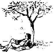 Izaak Newton pod drzewem.